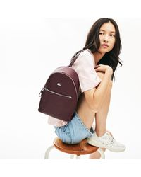 Lacoste Accessories > Bags > Backpacks - Multicolor