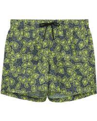 Danward - 'capri' Jellyfish Print Swim Shorts - Lyst