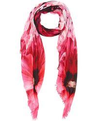 Alexander McQueen 'paradise' Skull Shawl - Pink