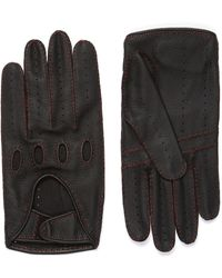 CONNOLLY Leather Gloves - Black