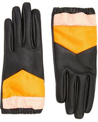 Aristide Colourblock Leather Gloves - Black