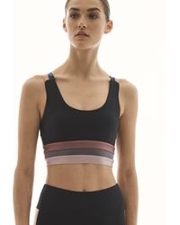Lanston Breathe Stripe Bra - Multicolor