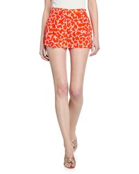 Diane von Furstenberg Naples Pattern Shorts - Red