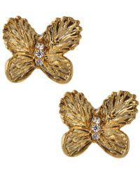 Tai - Cz Butterfly Stud Earrings - Lyst