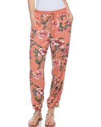 Fever Floral Drawstring Sweatpants - Orange