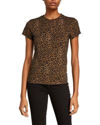 Pam & Gela Leopard Basic Tee - Brown