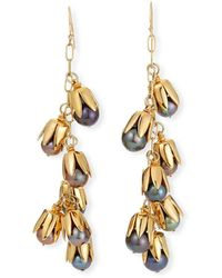 Lulu Frost Clairvoyant Gold-plated Faux Pearl Earrings - Metallic