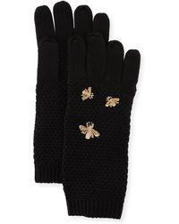 BCBGMAXAZRIA The Bee's Knees Knit Gloves - Black