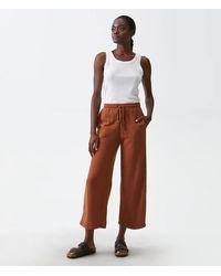 Michael Stars Isa Wide Leg Sweatpants - Brown