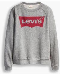 Levi's Graphic Standard Crewneck Sweatshirt (Plus) Grigio