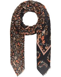 Lily and Lionel Jasmine Modal-blend Scarf - Black