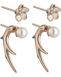 Shaun Leane - Rose Gold Vermeil Cherry Blossom Flower And Pearl Talon Earrings - Lyst