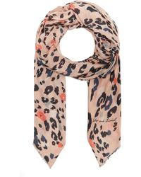Lily and Lionel Dancing Leopard Cashmere Scarf - Pink