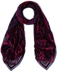 Liberty Ianthe 70x180 Silk Devore Scarf - Multicolor