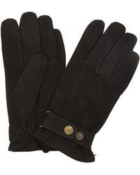 Dents Wells Nubuck Gloves - Black