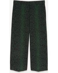 Dries Van Noten Snake Print Pants - Green