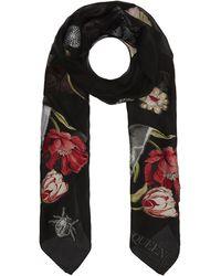 Alexander McQueen Victorian Curiosities Silk Scarf - Black