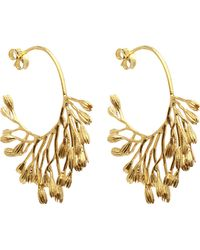 Alex Monroe - Gold-plated Fanned Seed Pod Hoop Earrings - Lyst