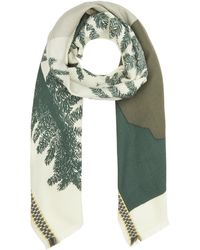 Inouitoosh Sun And Trees Wool Scarf - Green