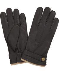 Dents Gloucester Deerskin Gloves - Black