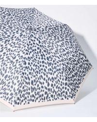 LOFT Leopard Print Umbrella - White