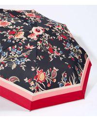 LOFT Floral Umbrella - Black