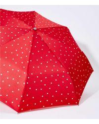 LOFT Dotted Umbrella - Red