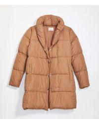 LOFT Puffer Coat - Brown