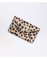 LOFT Leopard Print Tech Card Case - Multicolor