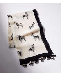 LOFT - Pom Pom Zebra Scarf - Lyst