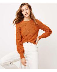 LOFT Bobble Pointelle Sweater - Orange