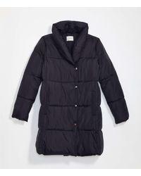 LOFT Puffer Coat - Black