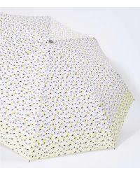LOFT Lemon Umbrella - Multicolour