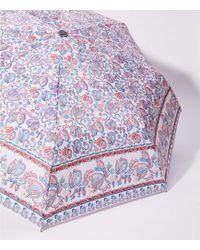 LOFT - Floral Paisley Border Umbrella - Lyst