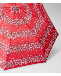 LOFT | Azalea Striped Umbrella | Lyst