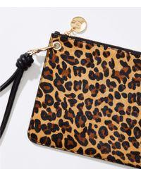 LOFT - Leopard Print Hair Calf Wristlet - Lyst