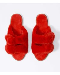 LOFT Faux Fur Buckle Slippers - Red