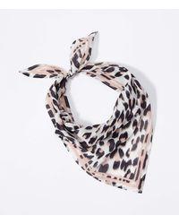 LOFT Leopard Print Triangle Bandana - White