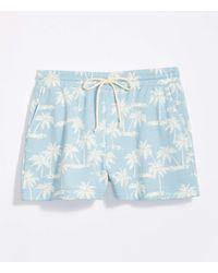 LOFT Lou & Grey Palm Tree Terry Drawstring Shorts - Blue