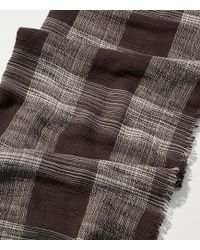 LOFT - Plaid Textured Infinity Scarf - Lyst