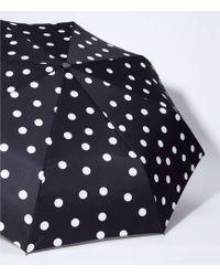 LOFT Dotted Umbrella - Black
