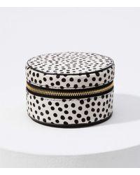LOFT Dot Print Hair Calf Jewelry Case - Multicolor