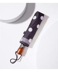 LOFT Bordered Polka Dot Umbrella - Black