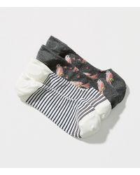 LOFT - Bird & Stripe No Show Sock Set - Lyst