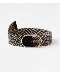 LOFT Woven Straw Belt - Black