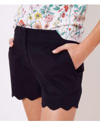 LOFT Scalloped Shorts With 4 Inch Inseam - Black