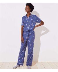 LOFT - Zebra Pajama Pants - Lyst