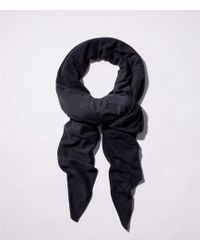 LOFT - The Travel Scarf - Lyst