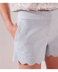 LOFT Scalloped Shorts With 4 Inch Inseam - Multicolour