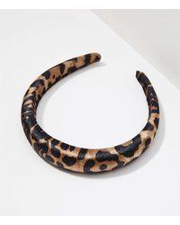 LOFT Puffed Velvet Headband - Brown